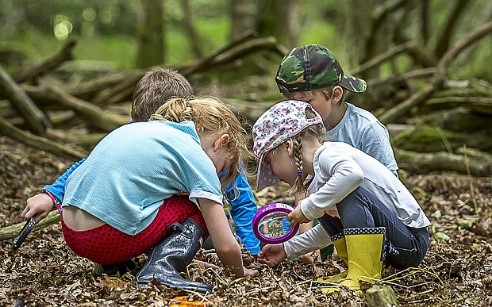 Children playing with leaves in the forest