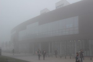 Hub in the Fog