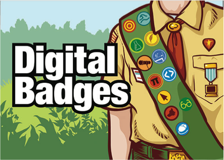 Image of boy scout wearing a sash covered in badges