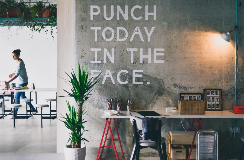 Green plant beside white desk, with phrase on wall saying 'punch today in the face'.